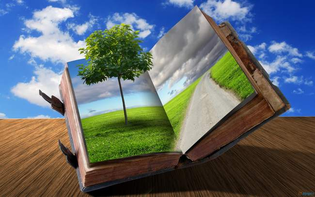 ecologie-livre-wallpaper-digital