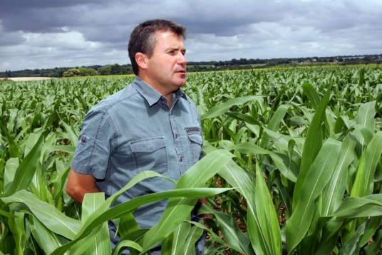 paul-francois-agriculteur-victime-de-monsanto-photo-majid_355096_536x358p