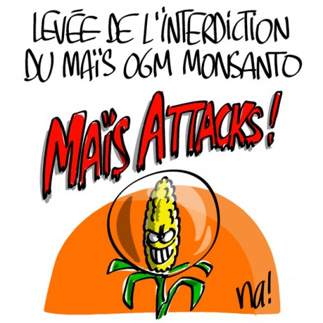 884_mais_attacks