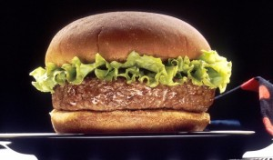 17277-a-hamburger-on-a-plate-pv-e1445826935193
