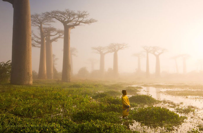 national_geographic_photo_09