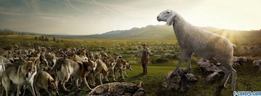 funny-sheep-and-wolves-facebook-cover-timeline-banner-for-fb