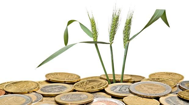 épi-argent-nature-écologie-euros