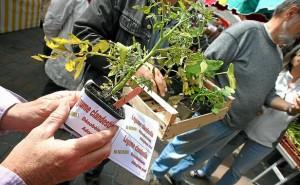 marre-mauvais-plants-1335761-616x380