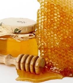 du-miel-pour-combattre-les-super-bacteries_27582_w250