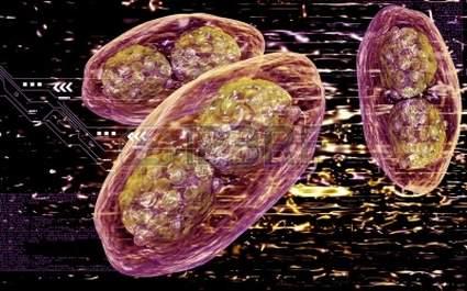 5345232-illustration-numerique-du-virus-de-la-variole-en-arriere-plan-de-couleur