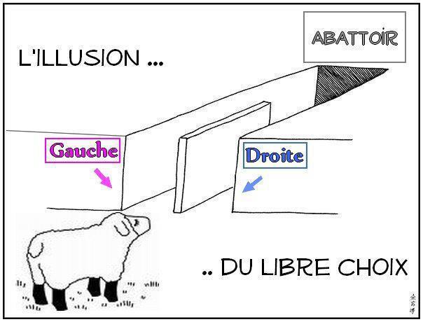 gauche_drote_mouton_abbatoir_election