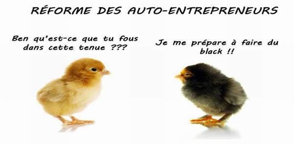 auto-entrepreneur-poussin-black