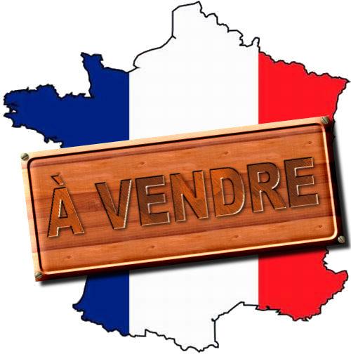 https://lesmoutonsenrages.fr/wp-content/uploads/2014/10/France-%C3%A0-vendre.jpg