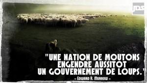 Une nation de moutons...