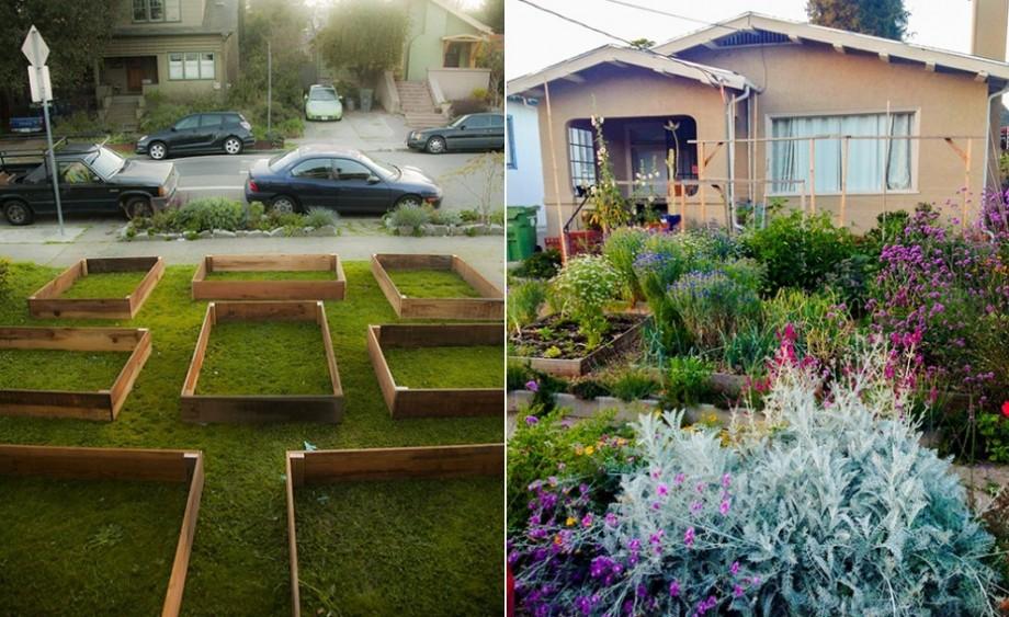 01-lawn-garden-transformation-e1426416906699-920x563