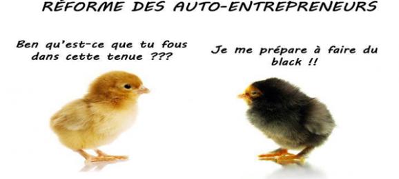 auto-entrepreneur-poussin-black-578x260