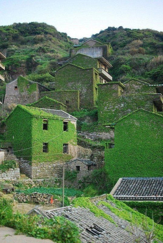 village-chine-nature-vegetation-14-536x800
