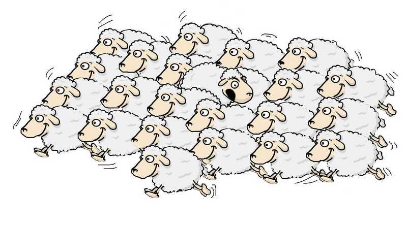 Mouton-tutelle