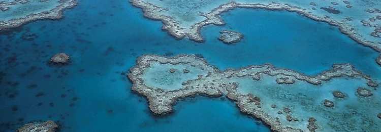 great-barrier-reef-527987_960_720