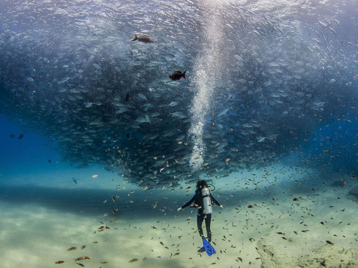 national_geographic_photo_18
