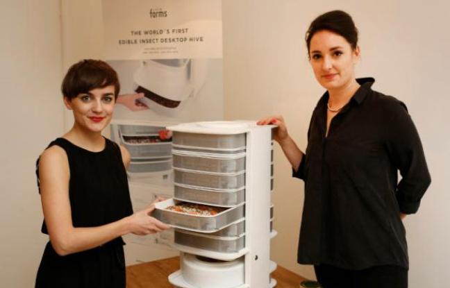 """Katharina Unger (g) et Julia Kaisinger présentent leur appareil """"Ruche de table"""", le 7 janvier 2016 à Vienne - Dieter Nagl AFP"""