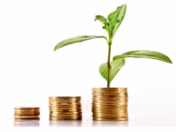 plante-argent-1024x767