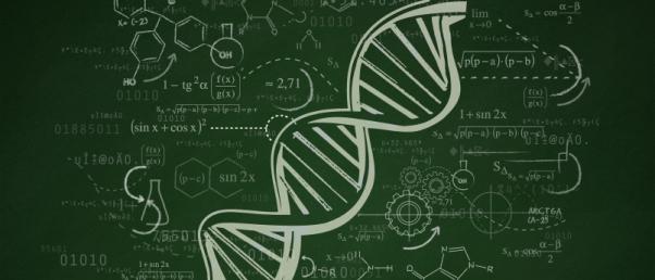 02_genome_55