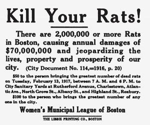 kill-your-rats-300x250