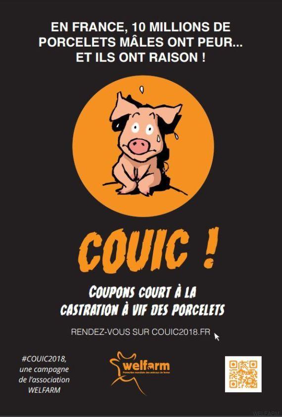 welfarm-campagne-censure-affiche-castration-a-vif-porc-1